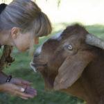 Rose De Dan and Goat Jake at New Moon Farm ©2013 Annie Marie Musselman www.reikishamanic.com