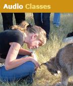 audio-classes