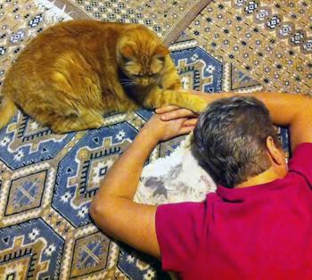 Paw Reiki, Tank the cat and Jan ©2014 Rose De Dan www.reikishamanic.com