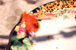 Yellow Jacket Flying Jaguar Salmon1, ©Rose De Dan www.ReikiShamanic.com