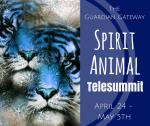 Spirit Animal Telesummit Box Ad